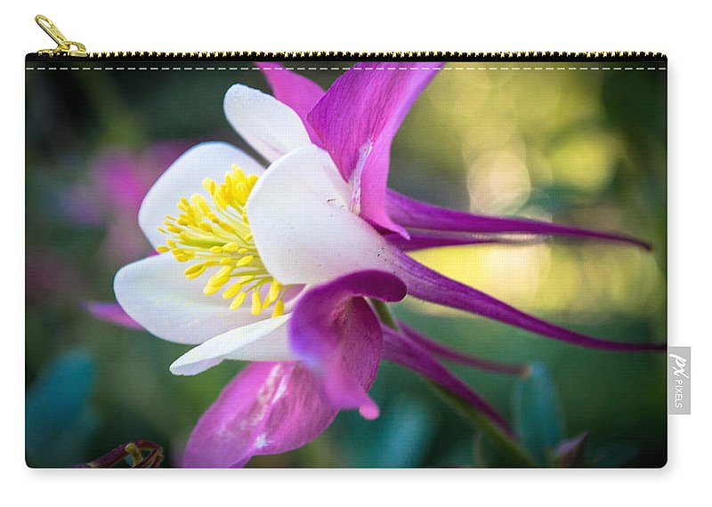 Columbine Carry-all Pouch featuring the photograph Rachel's Columbine by Debra Powell