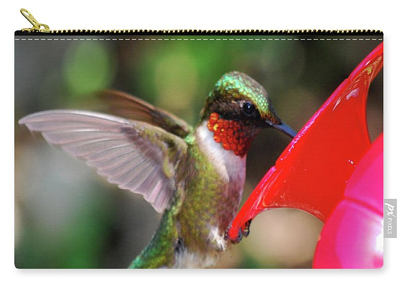 Hummingbird Carry-all Pouch featuring the photograph Radiant Ruby by Lori Tambakis
