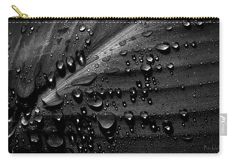 Rain Carry-all Pouch featuring the photograph Rain by Bob Orsillo