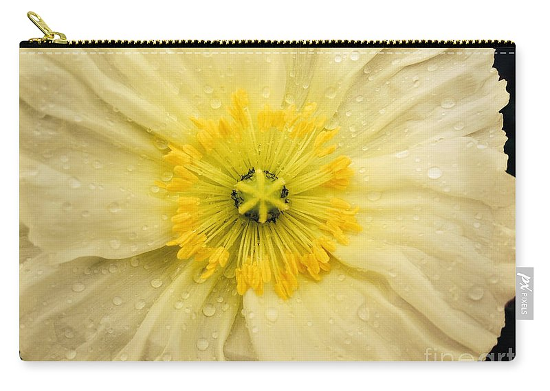 Poppy Carry-all Pouch featuring the photograph Rain Drenched Yellow Poppy by Jacklyn Duryea Fraizer