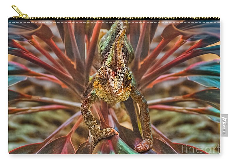 Lizard Carry-all Pouch featuring the photograph Rainbow Chameleon by Photos By Cassandra