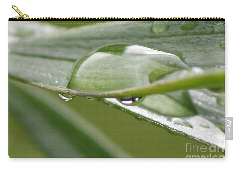Raindrop Carry-all Pouch featuring the photograph Raindrops by Carol Lynch