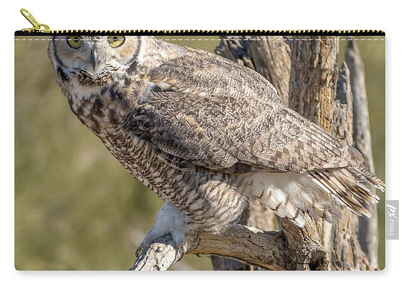 Raptor Carry-all Pouch featuring the photograph Raptor 14 by Larry White