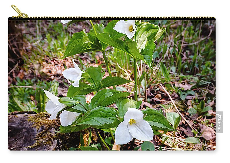Rare Great White Trilliums Michigan Carry-all Pouch featuring the photograph Rare Great White Trilliums by LeeAnn McLaneGoetz McLaneGoetzStudioLLCcom