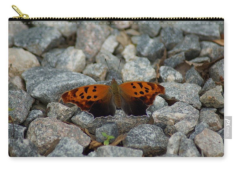 Digital Photography Carry-all Pouch featuring the photograph Rarely-sighted Butterfly Species by Kim Pate