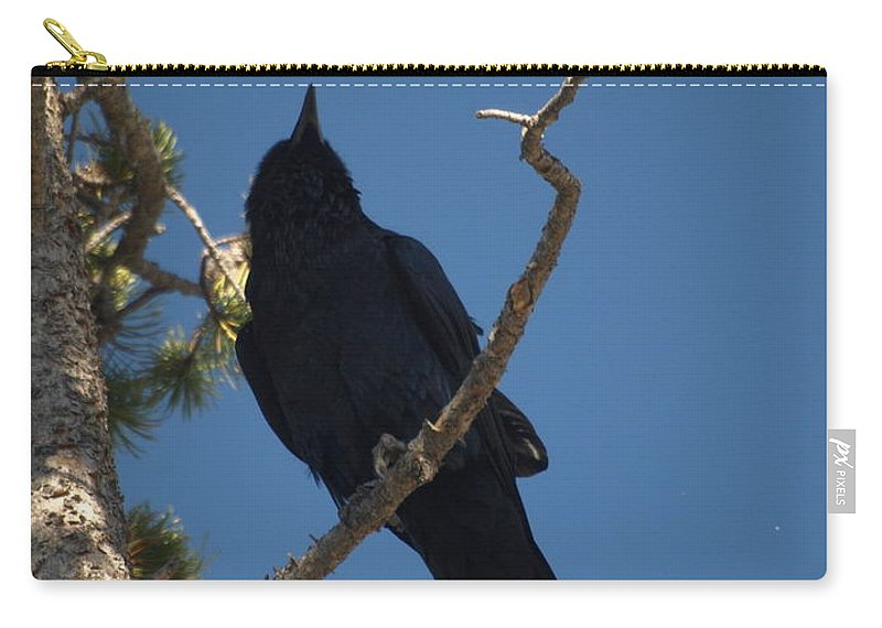 Raven Carry-all Pouch featuring the photograph Raven by Jacklyn Duryea Fraizer