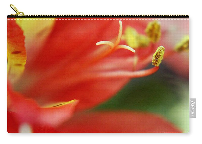 New Growth Carry-all Pouch featuring the photograph Reach Abstraction Limited Edition Bodecoarts by Robin Lewis