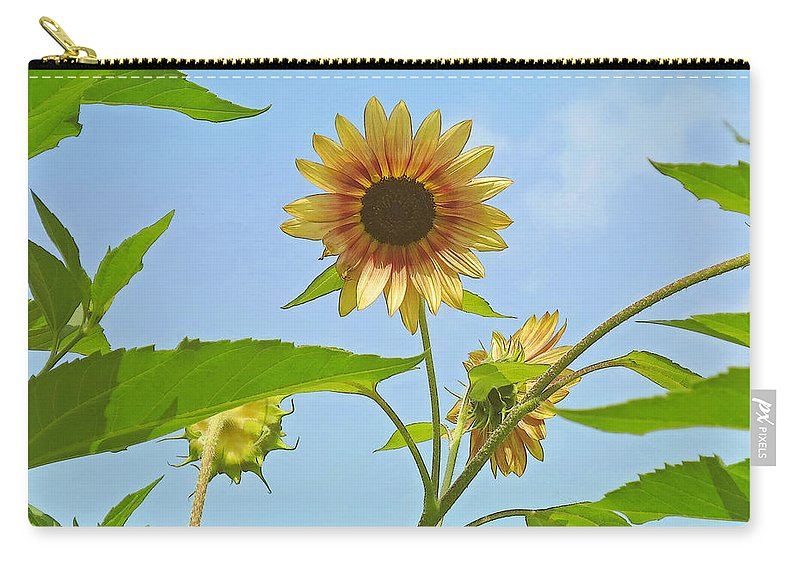 Flower Carry-all Pouch featuring the photograph Reaching For The Sky by Ann Horn