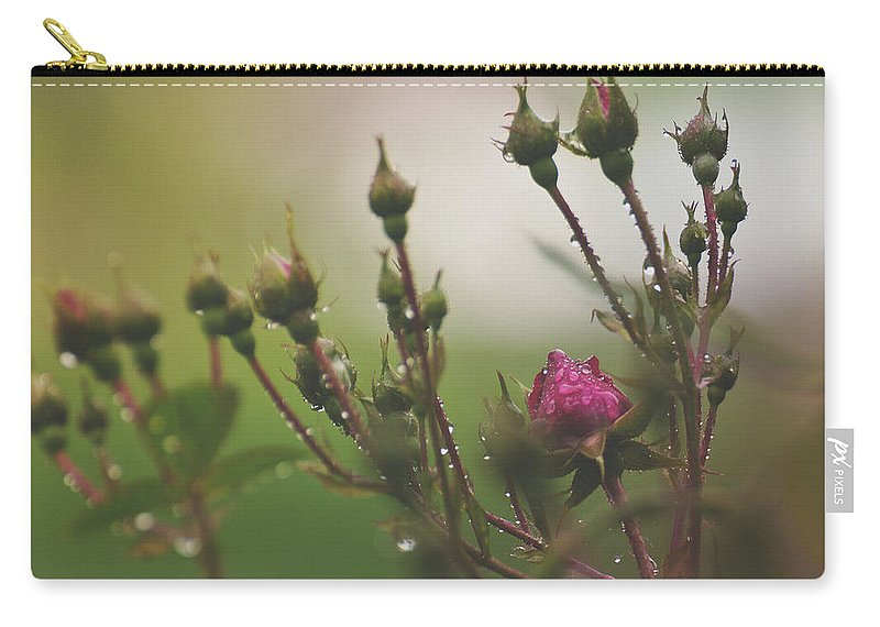 Roses Carry-all Pouch featuring the photograph Reaching For The Sun by Mel Hensley