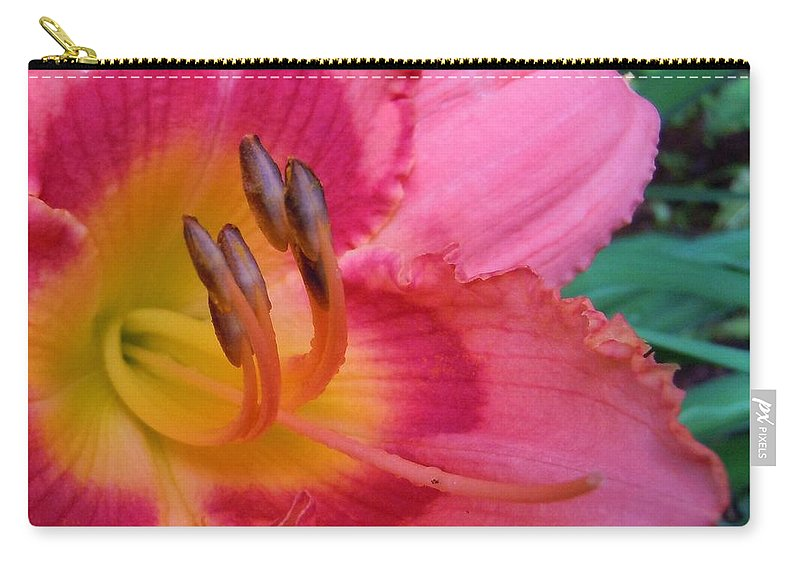 Flowers Carry-all Pouch featuring the photograph Reaching Out by Robert ONeil