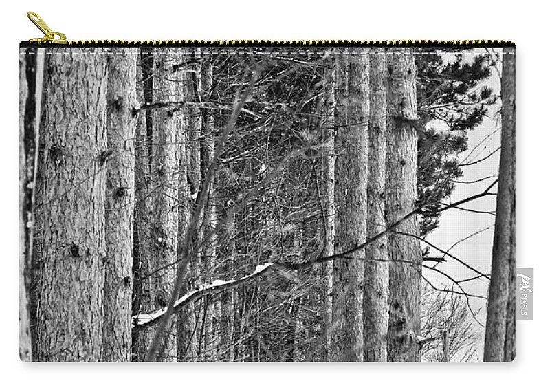 Pine Trees Carry-all Pouch featuring the photograph Reaching Pines by Sennie Pierson