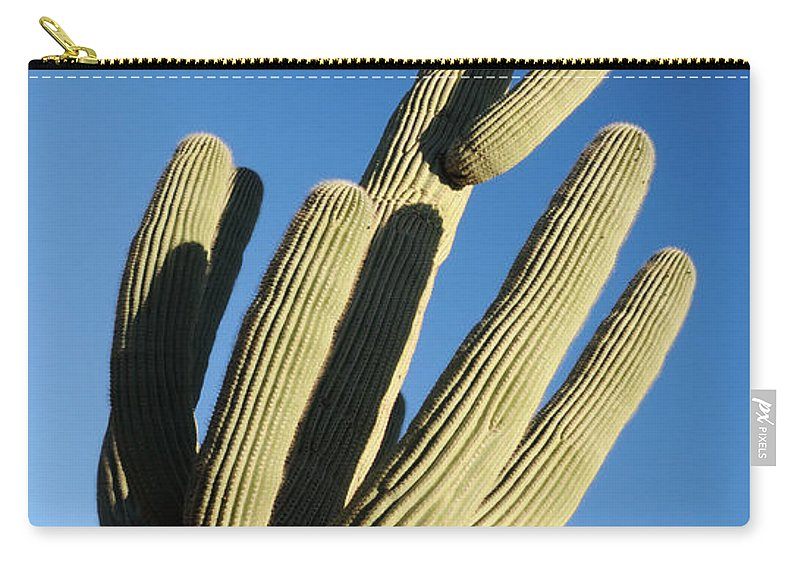 Saguaro Carry-all Pouch featuring the photograph Reaching Skyward by Vivian Christopher