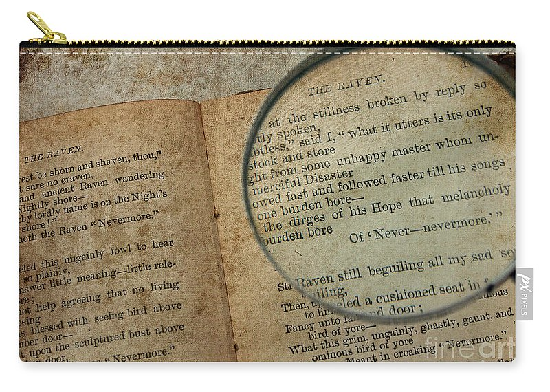 Books Carry-all Pouch featuring the photograph Reading The Raven by Jacklyn Duryea Fraizer