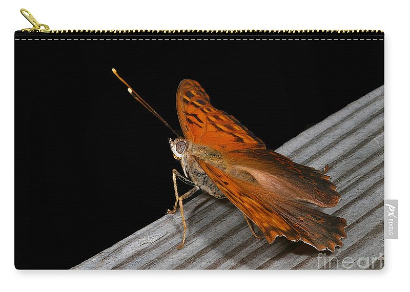 Butterflies Carry-all Pouch featuring the photograph Ready For Liftoff by Geoff Crego