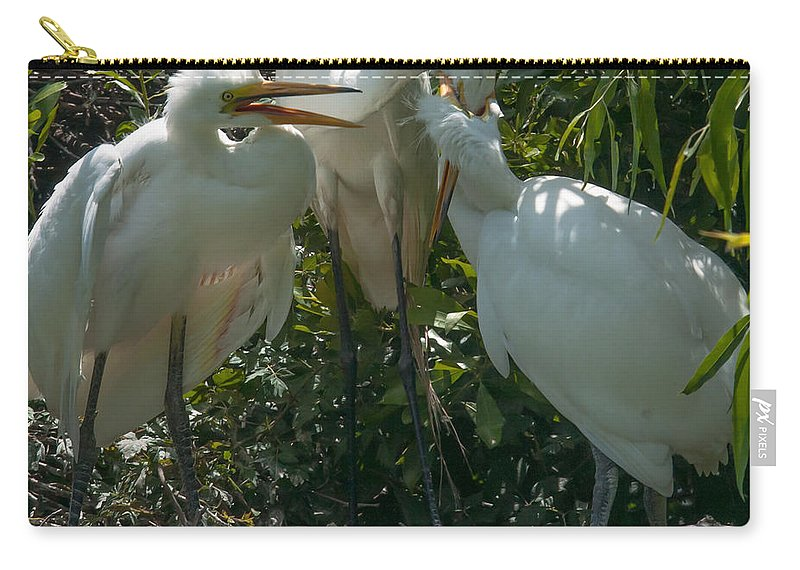 Great Carry-all Pouch featuring the photograph Ready To Rumble by Dale Powell