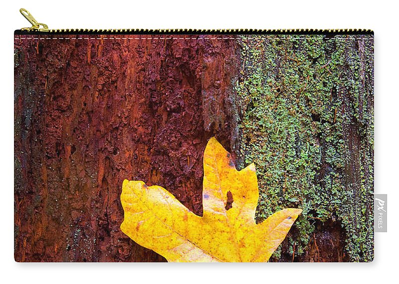 Leaves Carry-all Pouch featuring the photograph Reclamation by Mike Dawson