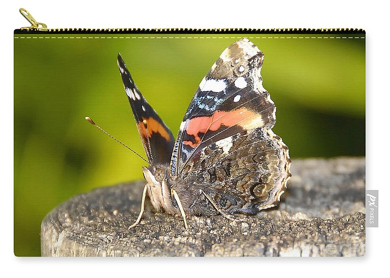 Red Admiral Butterfly Carry-all Pouch featuring the photograph Red Admiral Butterfly by David Lee Thompson
