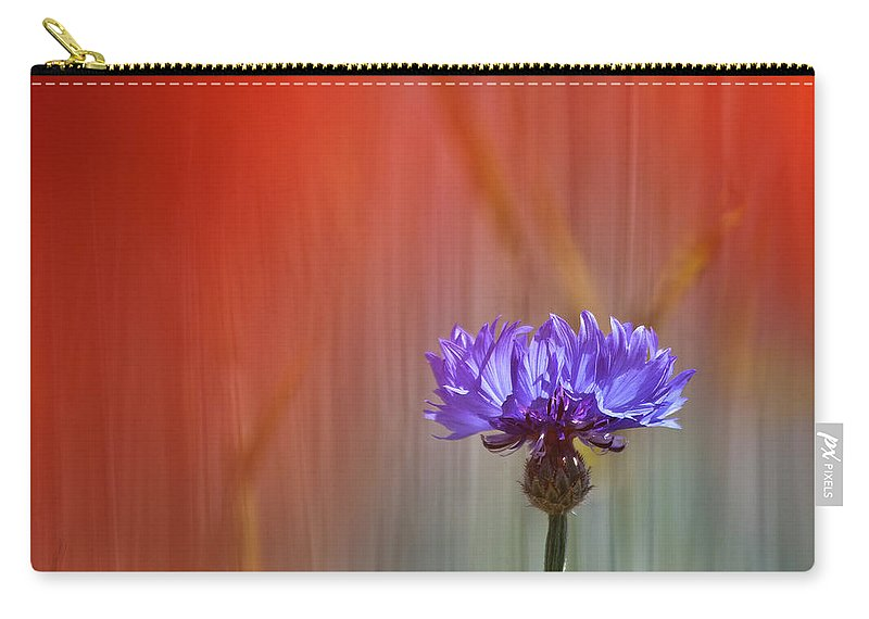 Cornflower Carry-all Pouch featuring the photograph Red And Blue by Heiko Koehrer-Wagner