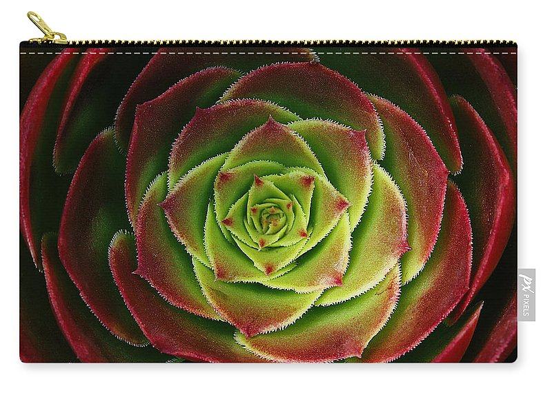 Succulent;red Carry-all Pouch featuring the photograph Red And Green by Robert Woodward