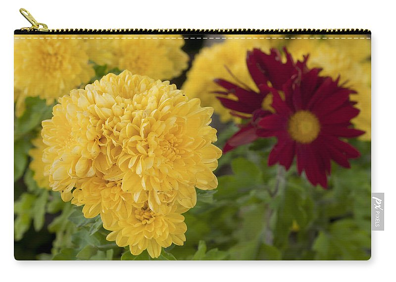 Card Carry-all Pouch featuring the photograph Red And Yellow by Pedro Cardona Llambias