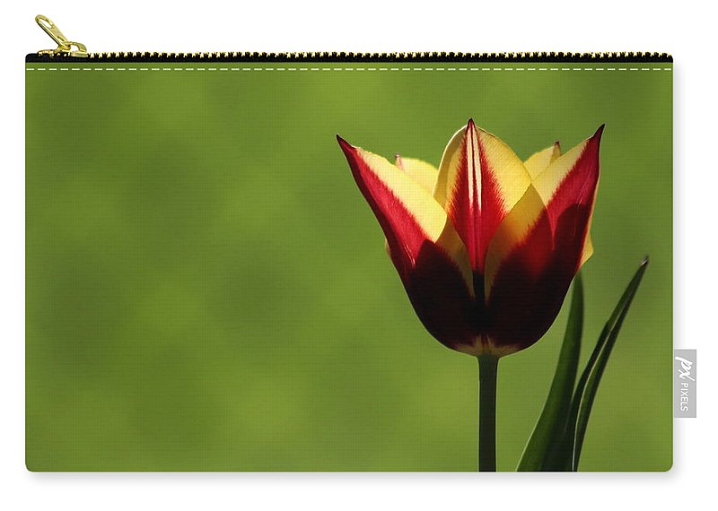Tulip Carry-all Pouch featuring the photograph Red And Yellow Tulip by Kenny Glotfelty