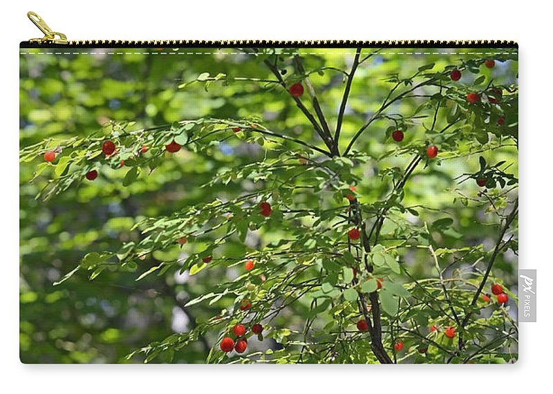Berries Carry-all Pouch featuring the photograph Red Berries by Shanna Hyatt