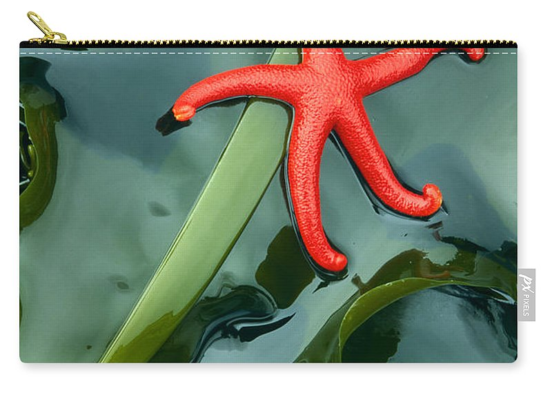 America Carry-all Pouch featuring the photograph Red Bloodstar by Inge Johnsson