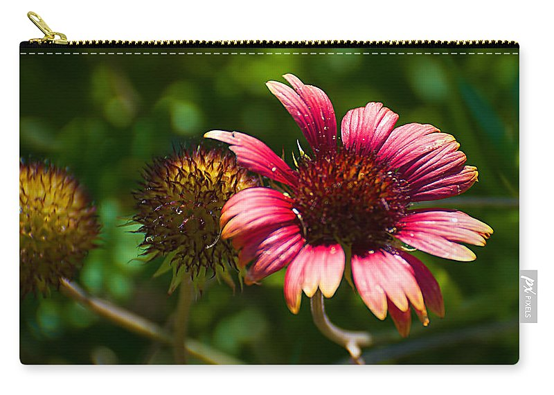 Red Carry-all Pouch featuring the photograph Red Bloom by Photos By Cassandra