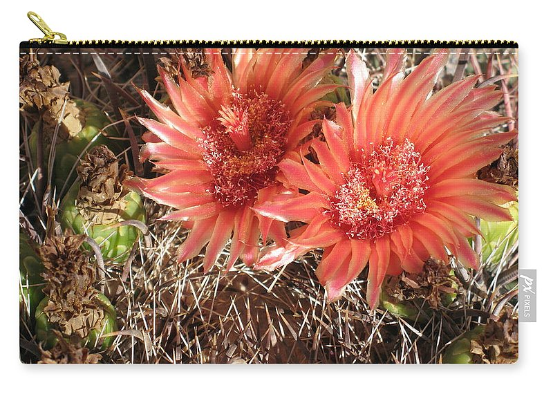 Cactus Carry-all Pouch featuring the photograph Red Cactus by Christiane Schulze Art And Photography