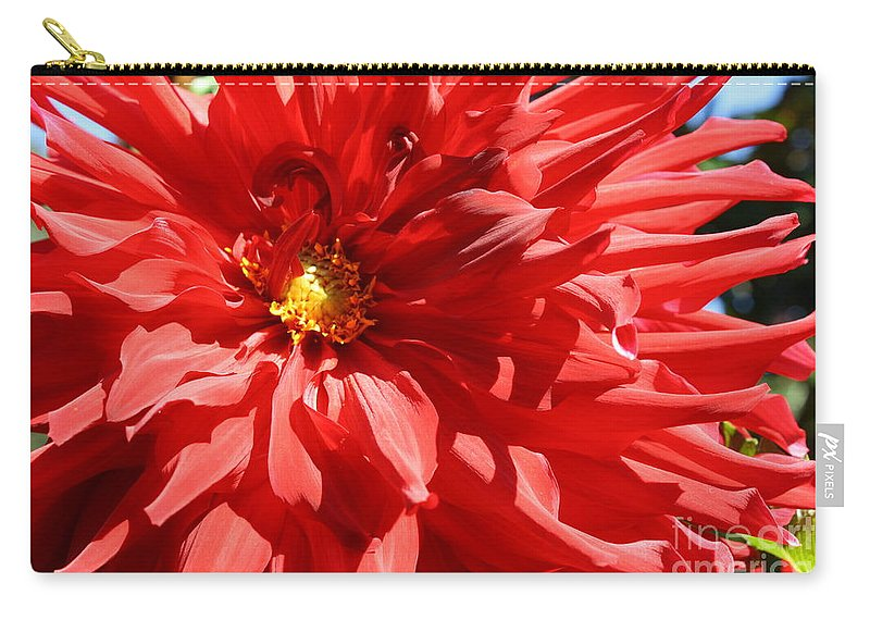 Dahlia Carry-all Pouch featuring the photograph Red Dahlia by Dora Sofia Caputo Photographic Design and Fine Art