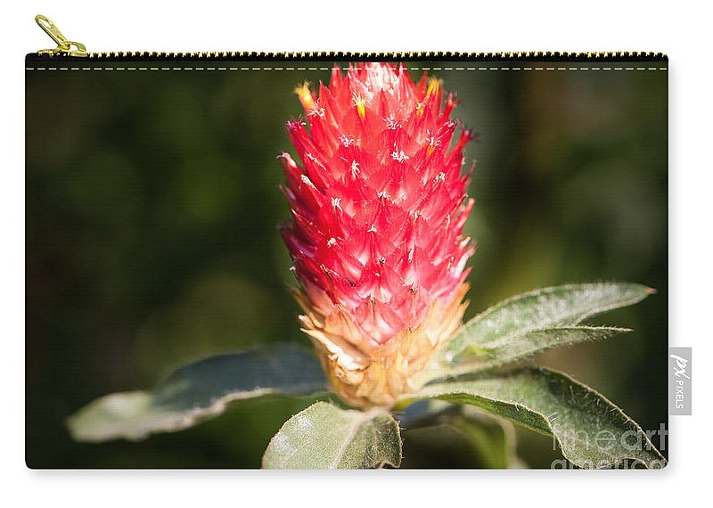 Botanical Carry-all Pouch featuring the photograph Red Flower by John Wadleigh