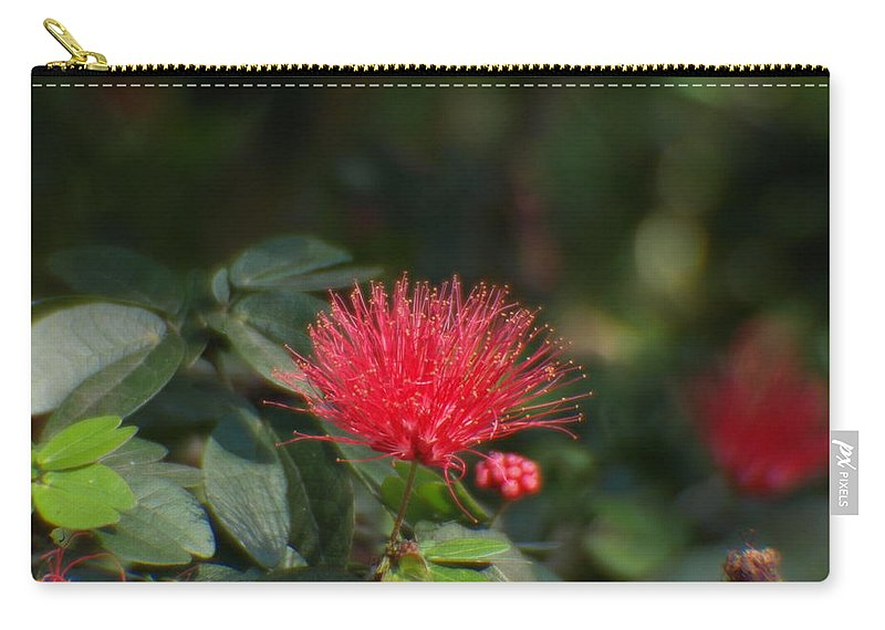 Flower Carry-all Pouch featuring the photograph Red Flower Spraying by Jo Jurkiewicz