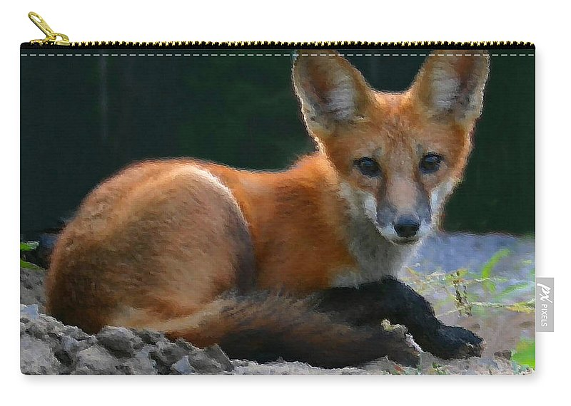 Red Fox Carry-all Pouch featuring the photograph Red Fox by Kristin Elmquist