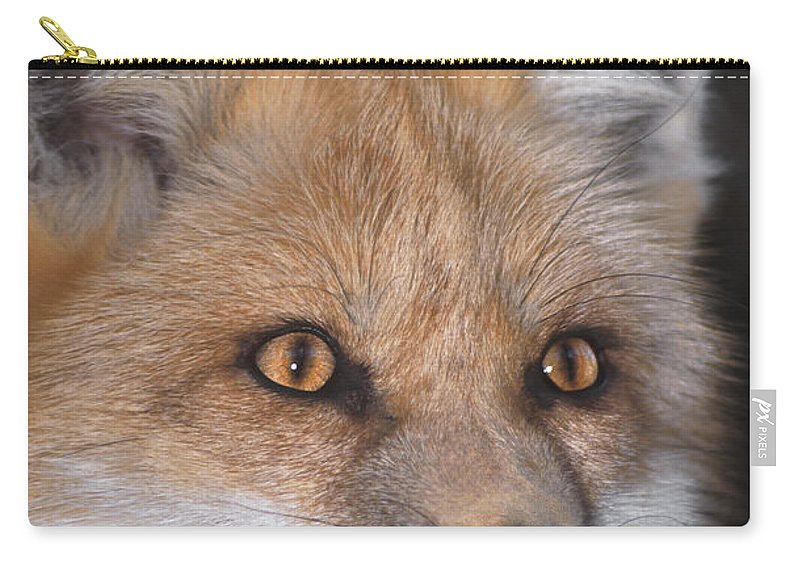 Red Fox Carry-all Pouch featuring the photograph Red Fox Portrait Wildlife Rescue by Dave Welling
