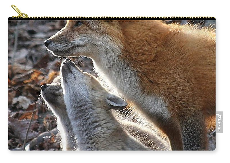 Red Fox Carry-all Pouch featuring the photograph Red Fox With Kits by Doris Potter