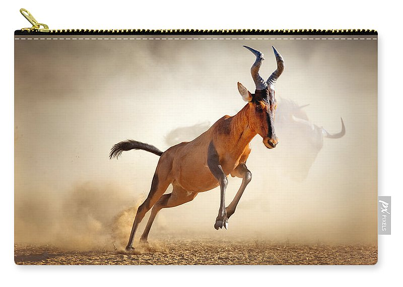 Hartebeest Carry-all Pouch featuring the photograph Red Hartebeest Running In Dust by Johan Swanepoel