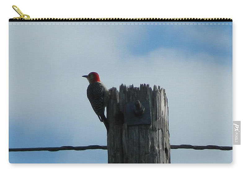 Red-headed Woodpecker Carry-all Pouch featuring the photograph Red-headed Woodpecker by George Pedro