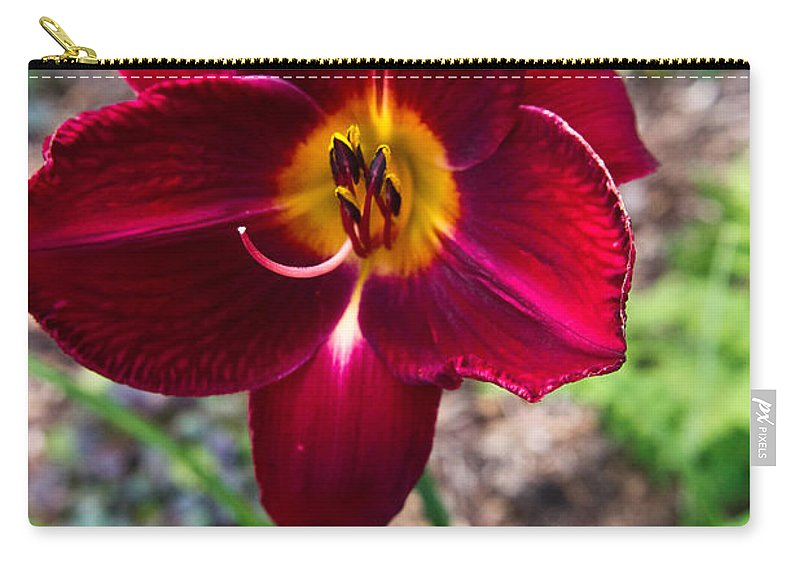 Calla Carry-all Pouch featuring the photograph Red Lady Lily 1 by Douglas Barnett