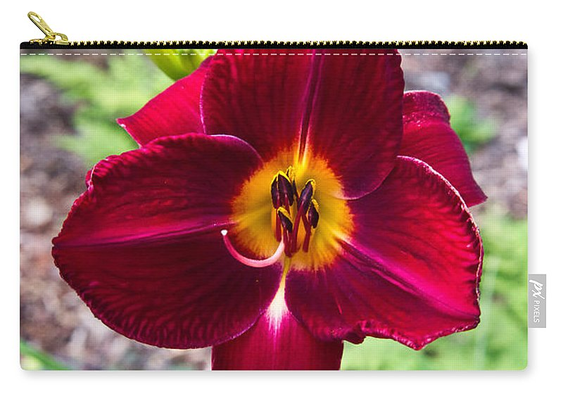 Red Carry-all Pouch featuring the photograph Red Lady Lily 2 by Douglas Barnett