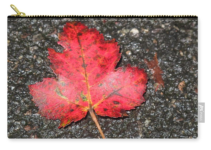 Leaves Carry-all Pouch featuring the photograph Red Leaf On Pavement by Barbara McDevitt