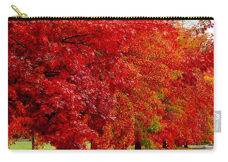 Red Leaf Leaves Fall Colors Road Wet Lined Chico Ca Tree Carry-all Pouch featuring the photograph Red Leaf Road by Holly Blunkall