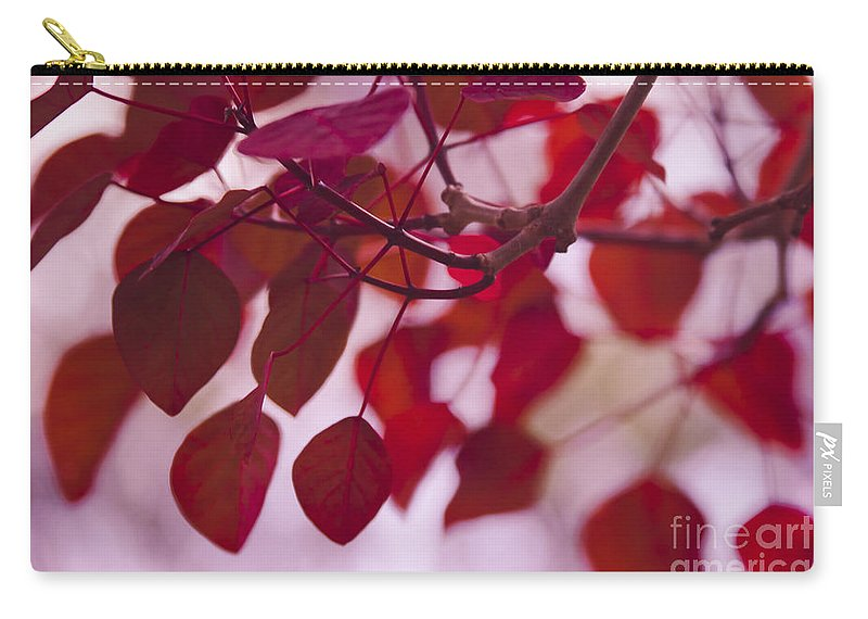 Red Leaves Carry-all Pouch featuring the photograph Red Leaves - Euphorbia Cotinifolia - Tropical Smoke Bush by Sharon Mau