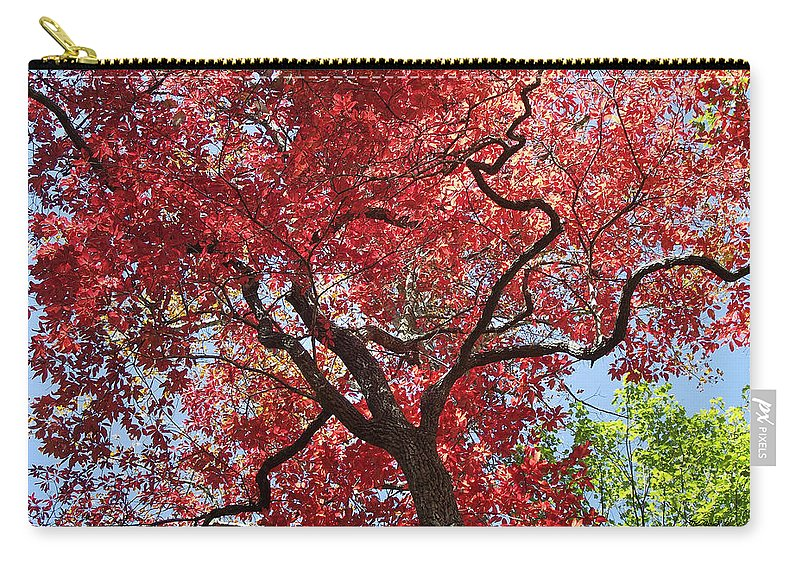 Plants Carry-all Pouch featuring the photograph Red Leaves On Tree by Duane McCullough