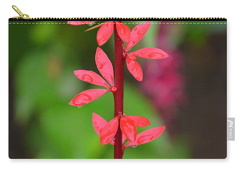 Red Leaves Carry-all Pouch featuring the photograph Red Leaves by Riad Belhimer