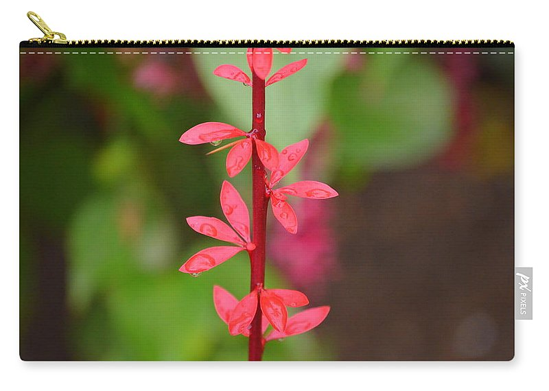 Red Leaves Carry-all Pouch featuring the photograph Red Leaves2 by Riad Belhimer
