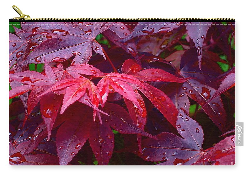 Rain Carry-all Pouch featuring the photograph Red Maple After Rain by Ann Horn