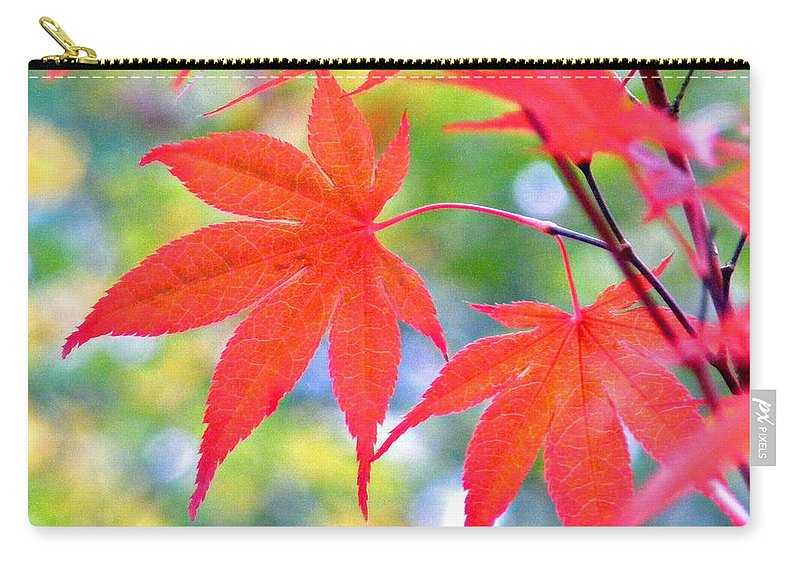 Plants Carry-all Pouch featuring the photograph Red Maple Leaves by Duane McCullough
