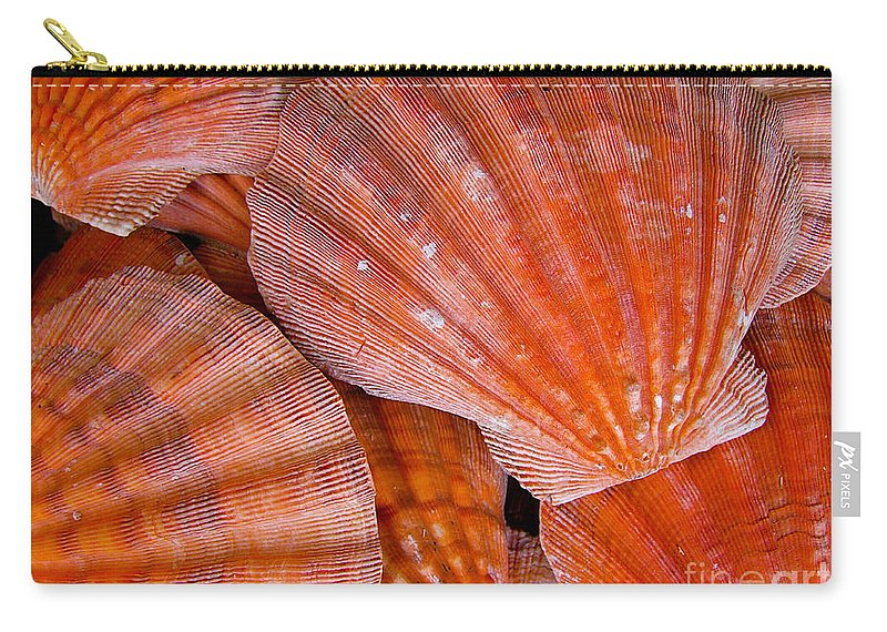 Sea Shell Carry-all Pouch featuring the photograph Red Orange Sea Shells by Amy Cicconi