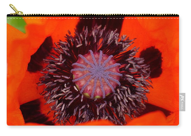 Oriental Poppy Carry-all Pouch featuring the photograph Red Oriental Poppy by Christiane Schulze Art And Photography