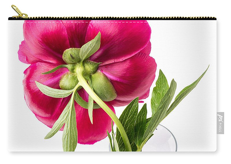 Flower Carry-all Pouch featuring the photograph Red Peony Flower Back by Edward Fielding